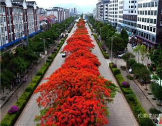 常态化推进文明创建 城市更有颜值和温度